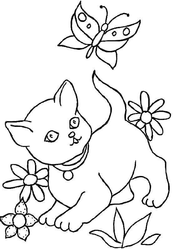 Katze mit Schmetterlingen