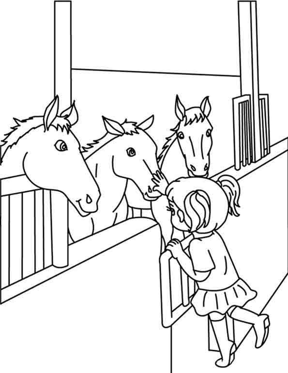 Ein Mädchen und mehrere Pferde