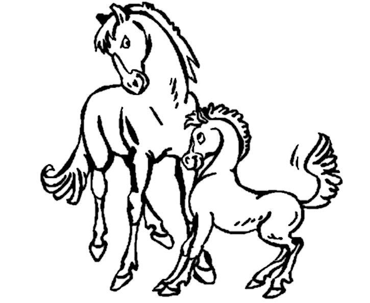 bilder zum ausmalen pferde 3