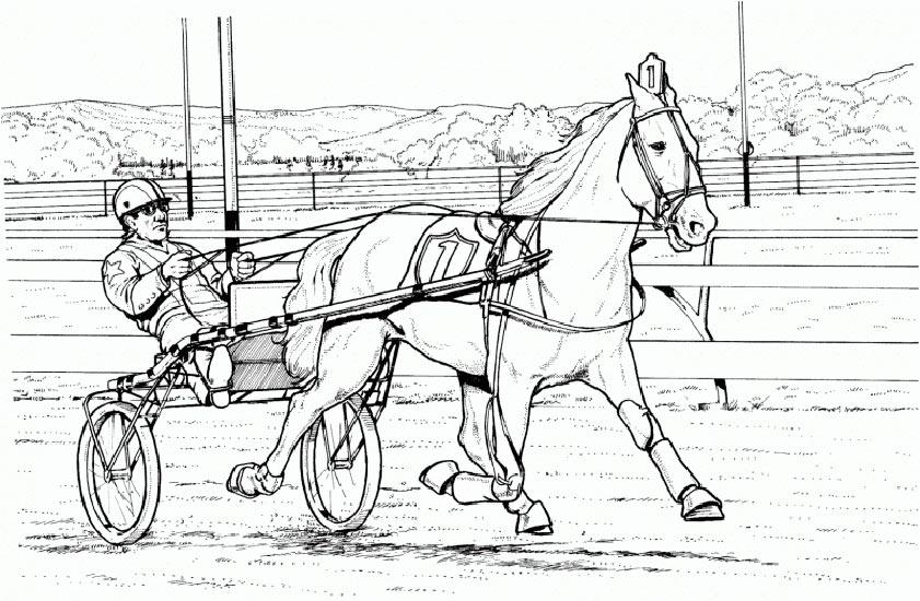 bilder zum ausmalen pferde 5