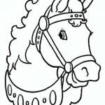 Pferde 08