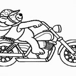 Motorrad (6)