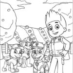 Paw Patrol (1)